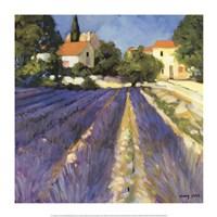 Framed Lavender Fields