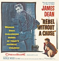 Framed Rebel Without a Cause The Star Sensation