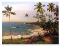Framed Tropical Coastline