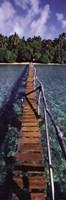 Framed Bridge to Paradise