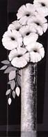 Framed Bouquet of Poppies II