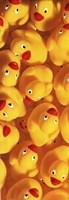 Framed Quack Quack III