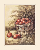 Framed Barrel Apples