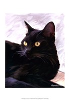 Framed Black Cat Portrait