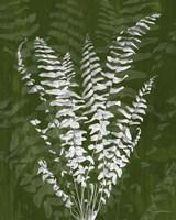 Framed Jewel Ferns I