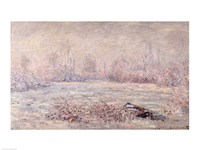Framed Frost near Vetheuil, 1880
