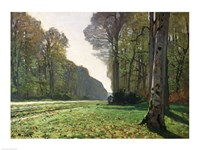 Framed Road to Bas-Breau, Fontainebleau (Le Pave de Chailly), c.1865