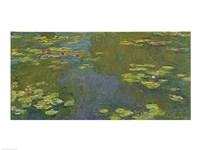 Framed Lily Pond
