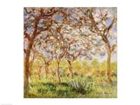 Framed Spring at Giverny