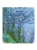 Framed Waterlilies (blue & green vertical)