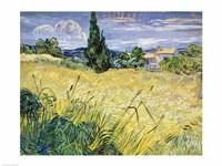 Framed Landscape with Green Corn, 1889