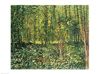 Framed Trees and Undergrowth, 1887