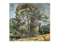Framed Large Pine, c.1889