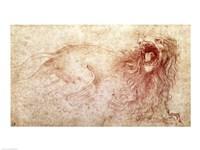 Framed Sketch of a roaring lion