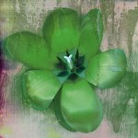 Framed Tulip Fresco (green)