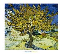 Framed Mulberry Tree, 1889