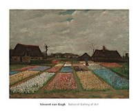 Framed Flower Beds in Holland, c. 1883