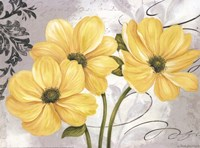 Framed Colori Yellow I