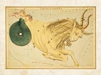 Framed Capricornus Zodiac Sign