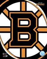Framed Boston Bruins 2011 Team Logo