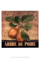 Framed French Pears