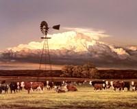 Framed Summer Pastures