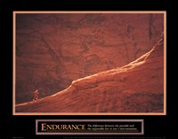 Framed Endurance