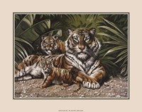 Framed Yellow Tigers With Cubs
