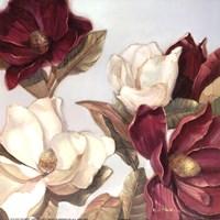 Framed Magnolia