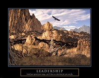 Framed Leadership-Eagle
