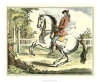 Framed Equestrian Training II