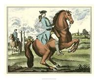 Framed Equestrian Training III