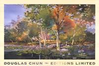 Framed Birch Pond