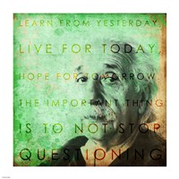 Framed Einstein – Live & Learn Quote