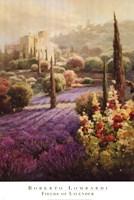 Framed Fields of Lavender
