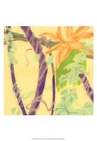 Framed Jungle Monotype V