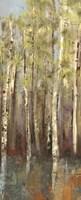 Framed Forest Whisper II