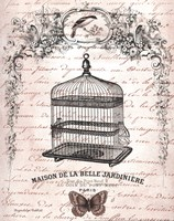 Framed French Birdcage II