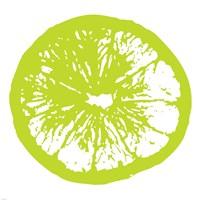 Framed Lime Orange Slice