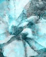 Framed Immersed I