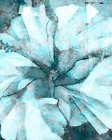 Framed Immersed II