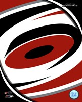 Framed Carolina Hurricanes 2013 Team Logo