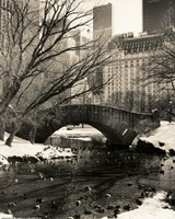 Framed Gapstow Bridge NYC