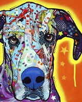 Framed Great Dane