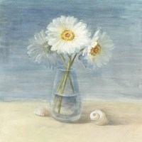 Framed Daisies and Shells