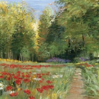 Framed Field of Flowers