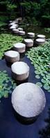 Framed Shrine Garden, Kyoto, Japan