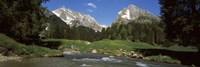 Framed Stream flowing through a forest, Mt Santis, Mt Altmann, Appenzell Alps, St Gallen Canton, Switzerland