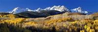 Framed USA, Colorado, Rocky Mountains, aspens, autumn