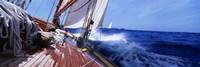 Framed Yacht Race